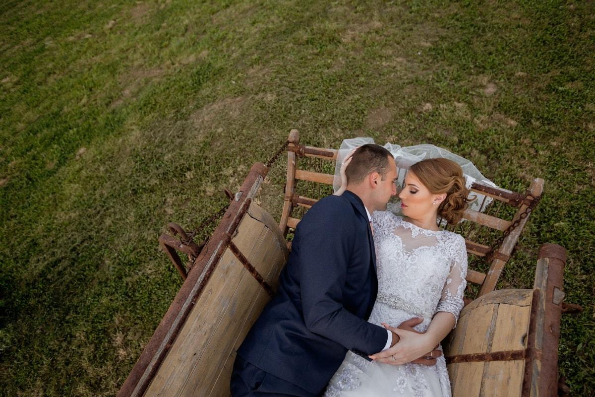 la mariée, portant, jeune marié, transport, robe de mariée, salle de mariage, mariage, amour, gens, romance