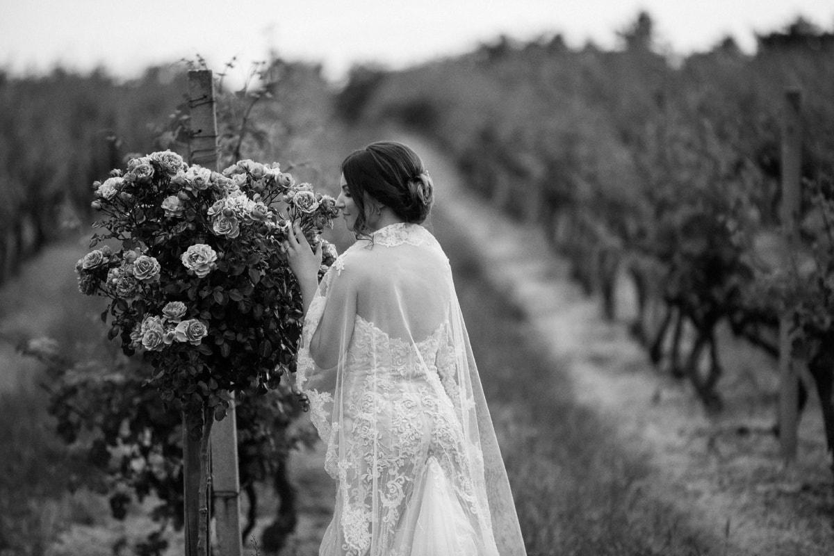 bride, nostalgia, vineyard, vintage, agriculture, groom, dress, monochrome, wedding, love