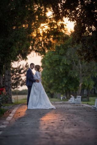 just married, bride, groom, sunset, park, wedding, marriage, girl, people, dress