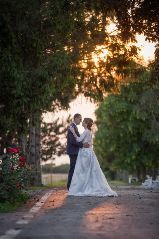 flower garden, newlyweds, embrace, posing, kiss, sunset, wedding, love, groom, marriage