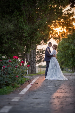 kiss, newlyweds, garden, sunset, pathway, wedding, bride, marriage, married, groom