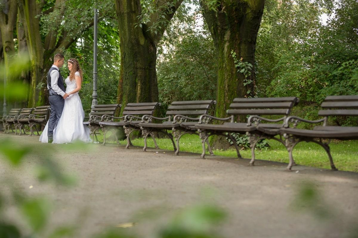 Sitzbank, Braut, zu Fuß, Bräutigam, romantische, Garten, Sitz, Möbel, Park, Hochzeit