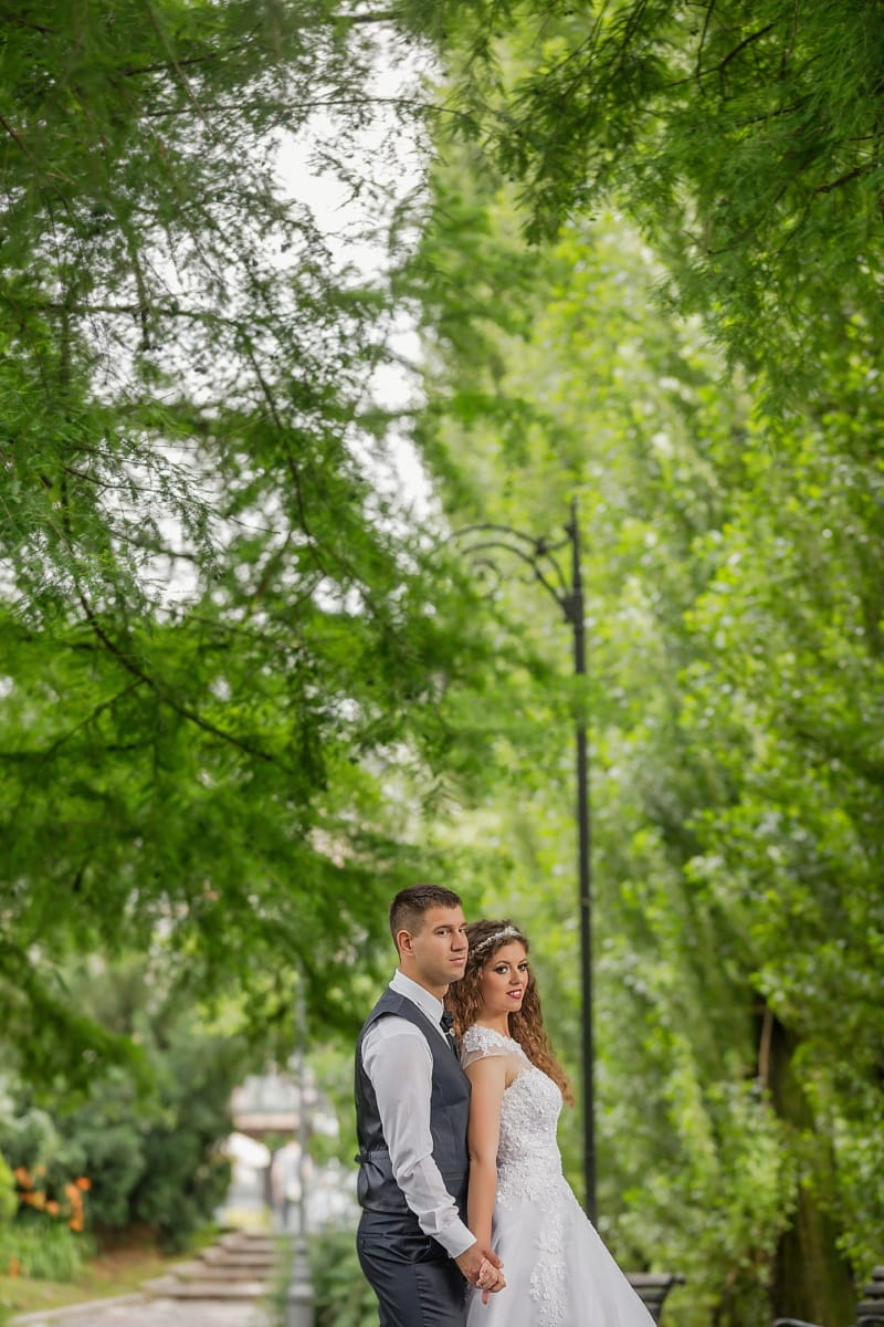 just married, embrace, love, husband, wife, trees, branches, park, plant, forest, tree