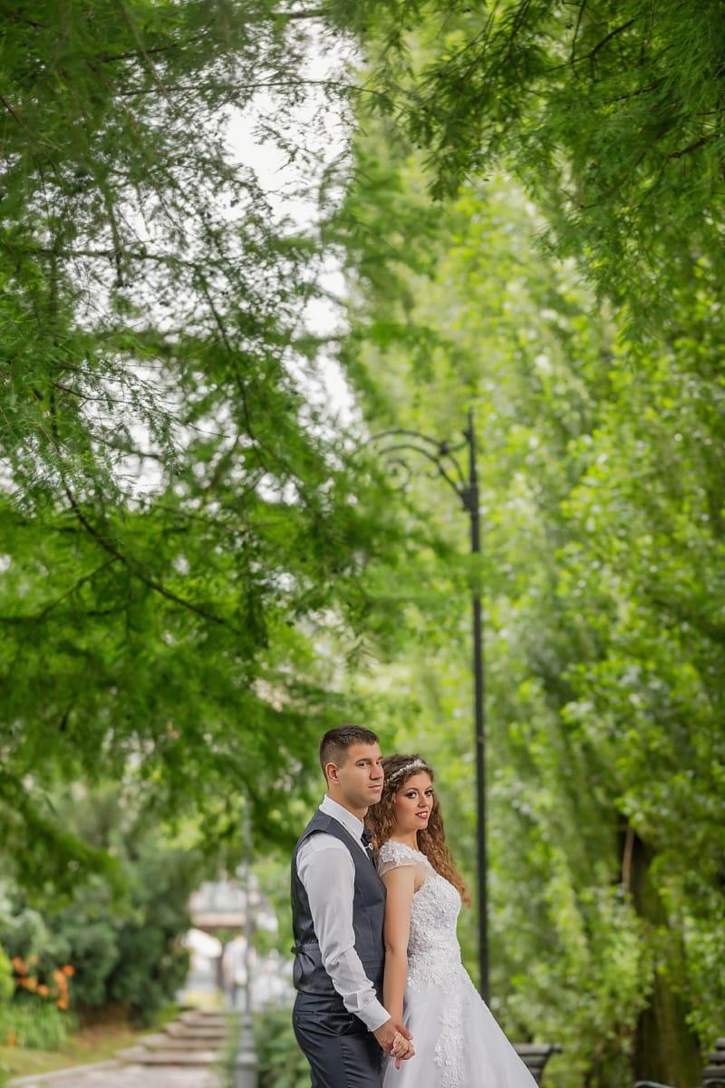 abrazo, amor, marido, esposa, árboles, ramas, луговий, planta, bosque, árbol