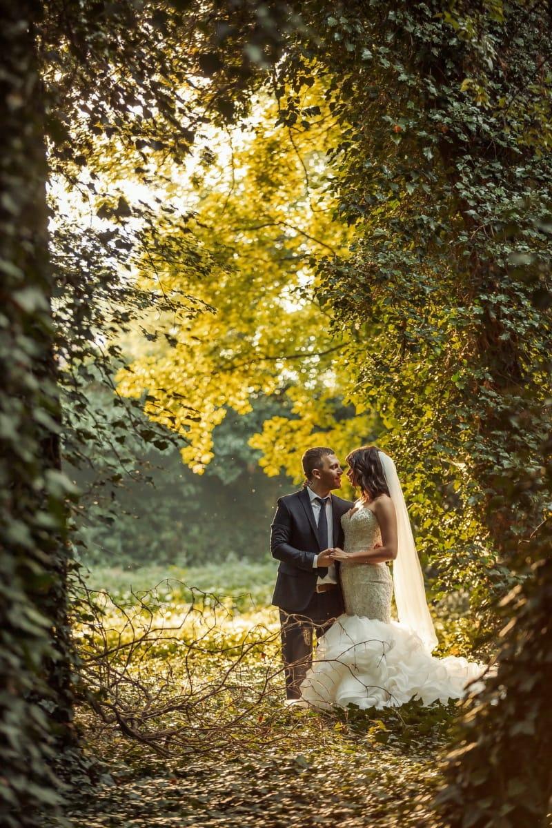 bospad, vergadering, romantische, wildernis, pas getrouwd, bruid, bruidegom, bos, bruiloft, park