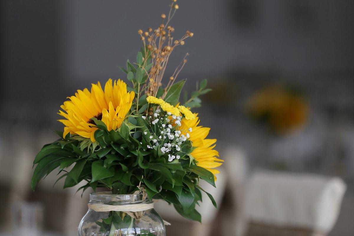 tournesol, pot, bouquet, décoration, fermer, fleur, feuille, vase, nature morte, pétales