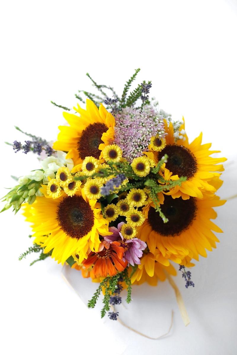 bunga matahari, karangan bunga, studio foto, pengaturan, dekorasi, bunga, mekar, kelopak, bunga, kuning