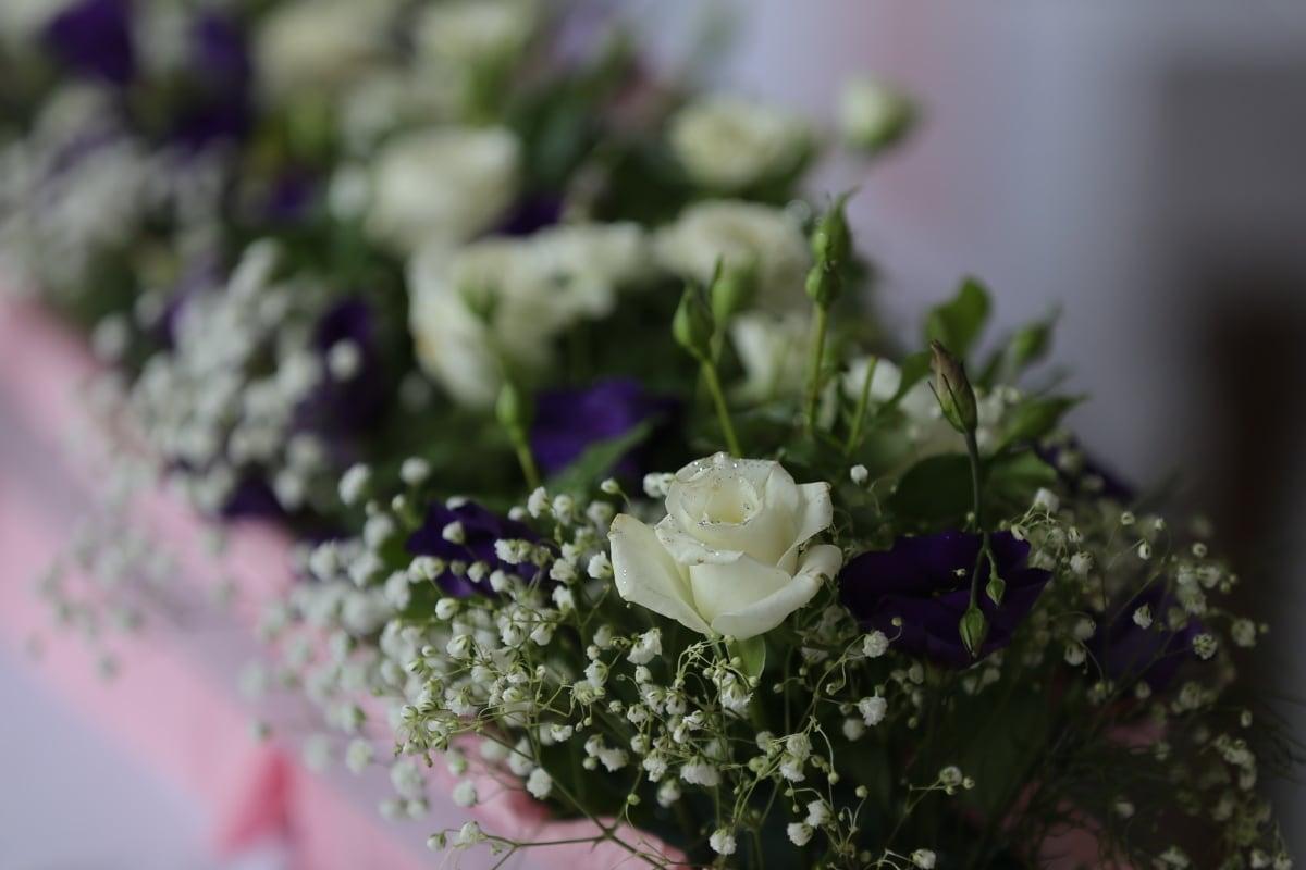 fleur blanche, bouquet, fermer, fleurs, arrangement, mariage, amour, fleur, décoration, Rose