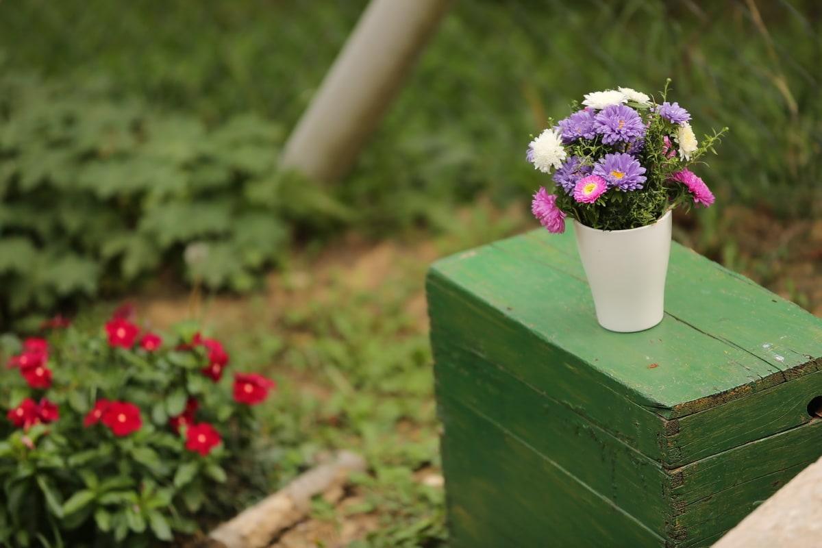 en bois, boîte de, boîte, bouquet, vase, été, fleur, jardin, feuille, herbe