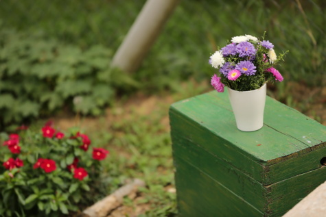 wooden, box, chest, bouquet, vase, summer, flower, garden, leaf, grass