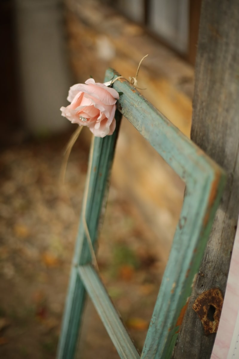 aus Holz, Frame, Fenster, alten Stil, Holz, im freien, Blume, Tageslicht, verwischen, Still-Leben