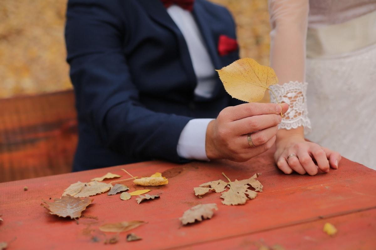 brun jaunâtre, feuilles, saison de l'automne, feuilles jaunes, la mariée, mains, jeune marié, femme, Loisirs, bois