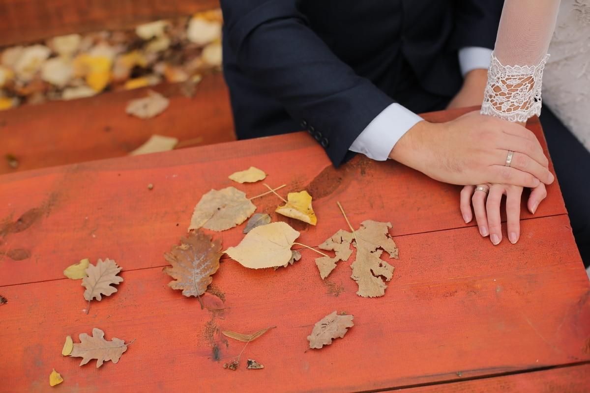 love, autumn season, wedding ring, hands, man, finger, touch, woman, wood, girl