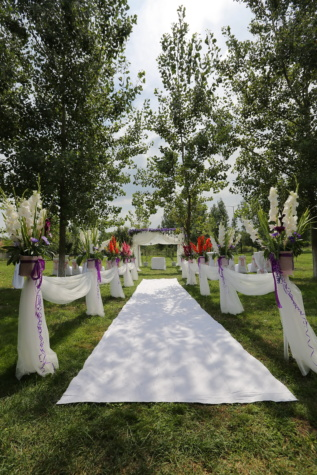 wedding venue, outdoor, garden, carpet, grass, white, lawn, elegant, tree, park