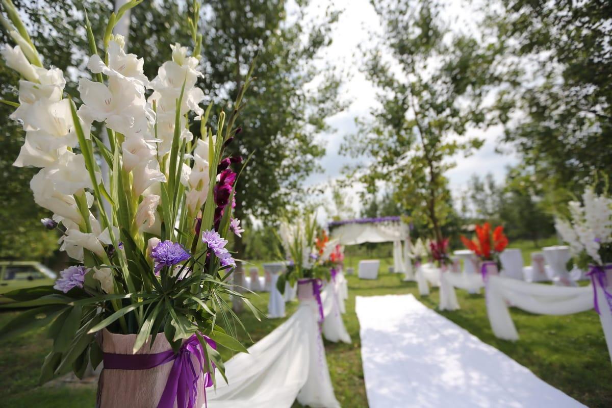 Hochzeitsort, Garten, Sommersaison, Eleganz, weiße Blume, Hochzeit, Blumen, Natur, Blume, Blumenstrauß