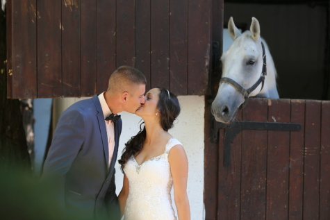 barn, horse, bride, groom, just married, happiness, countryside, kiss, village, farmhouse