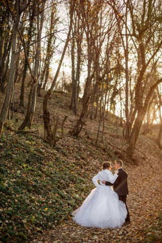 husband, wife, forest path, just married, togetherness, wedding, tree, bride, love, couple