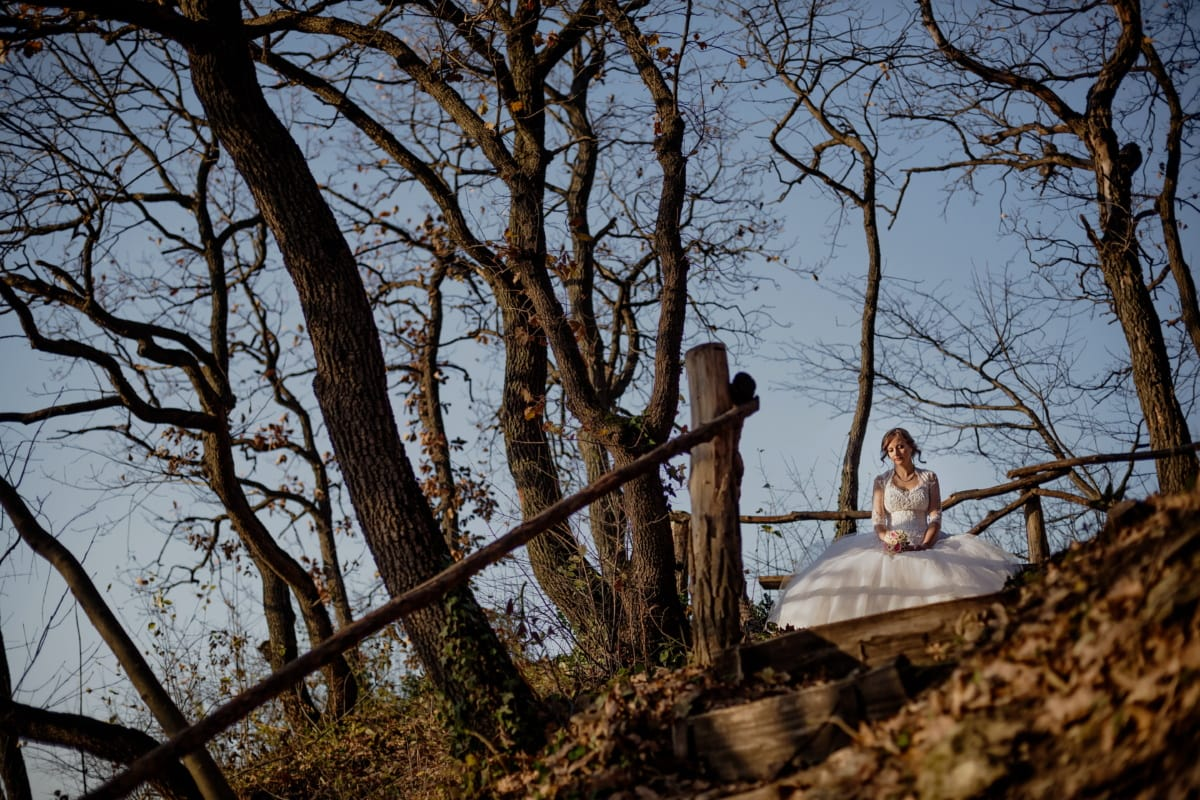 bride, alone, hilltop, think, forest, tree, trees, wood, landscape, girl
