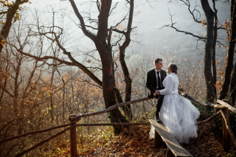 just married, forest, bride, nature, wilderness, groom, autumn, hiking, wedding, tree