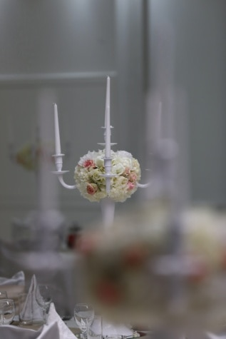 candlelight, candles, elegant, luxury, white, blurry, focus, plant, wedding, flower