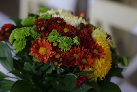 bouquet, chrysanthemum, close-up, colorful, plant, leaf, arrangement, flower, decoration, color