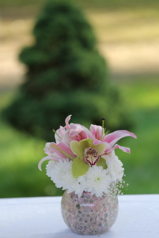 orchid, bouquet, flowers, vase, lily, petal, flower, pink, nature, blossom