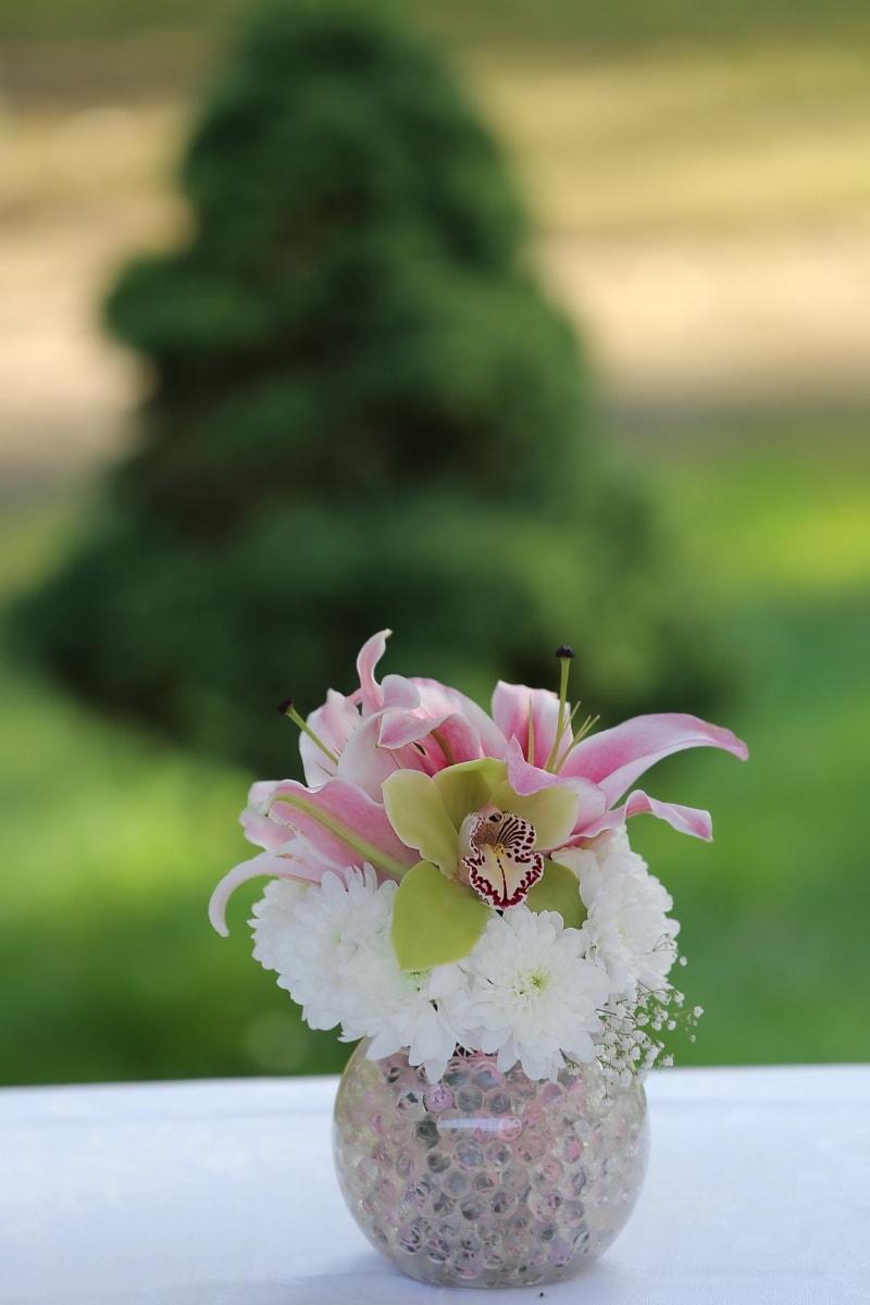 orhideja, buket, cvijeće, vaza, ljiljan, latica, cvijet, roza, priroda, cvijet