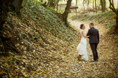 bride, groom, hillside, forest path, aspen, autumn season, leaf, love, nature, tree