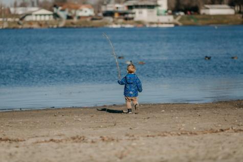 dítě, batole, prozkoumat, chůze, řeka, pobřeží, voda, pláž, dovolená, písek