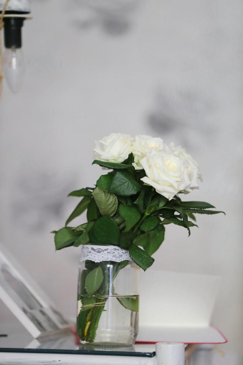 Rosen, weiße Blume, Minimalismus, Glas, einfach, Blumen, Blume, Blumenstrauß, Dekoration, Blatt