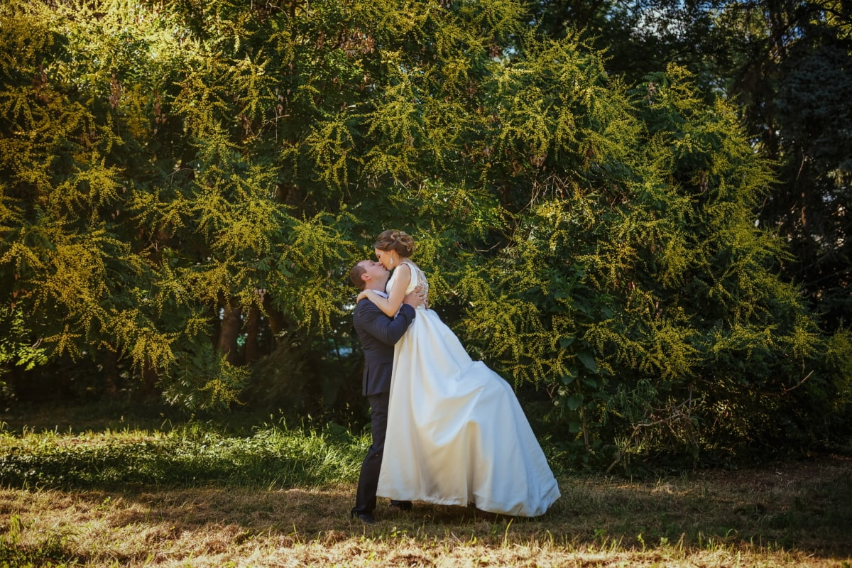 exhilaration, bride, kiss, groom, embrace, tree, girl, dress, wedding, park