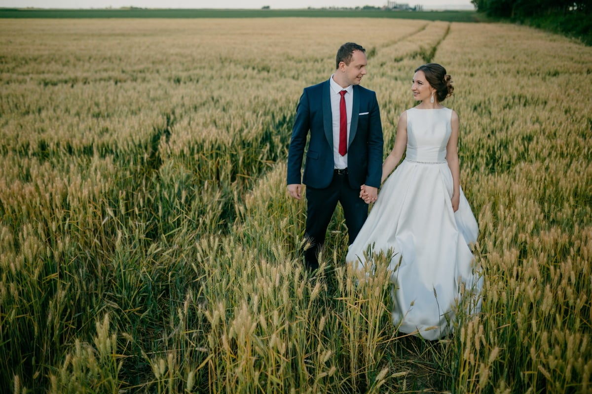 field, agriculture, groom, wheatfield, bride, happiness, cereal, girl, woman, nature