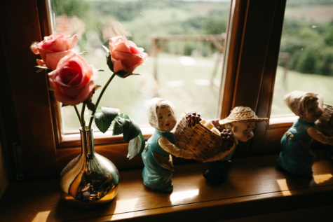interior decoration, windows, roses, ceramics, figurine, vase, flower, window, portrait, still life