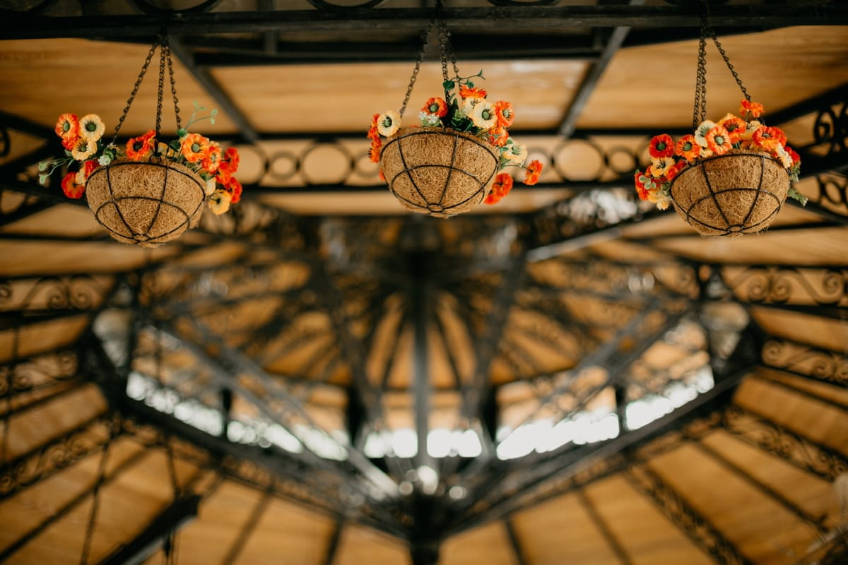 flowerpot, hanging, vintage, ceiling, framework, old, inside, light, indoors, color