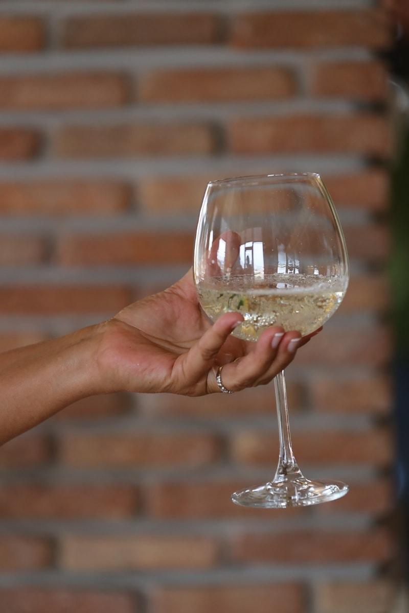beyaz şarap, şampanya, cam, Kristal, el, Holding, içecek, gözlük, alkol, içki