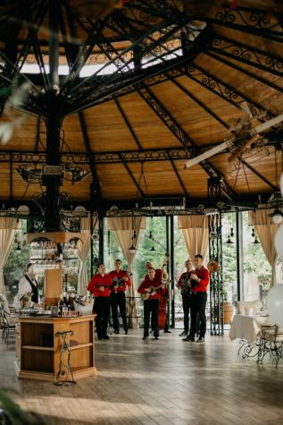 orchestra, men, musician, cafeteria, restaurant, concert, guitarist, indoors, people, architecture