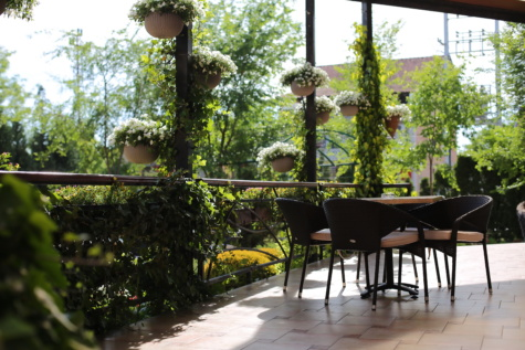 tornácon, kert, emelet, virágok, virágcserép, asztal, székek, terasz, szerkezete, terület