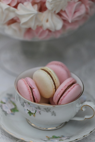 biscuit, food, cup, meringue, candy, delicious, cream, traditional, sweet, love