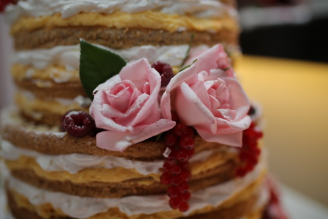 close-up, pancake, baked goods, decorative, homemade, raspberries, food, cream, breakfast, sweet
