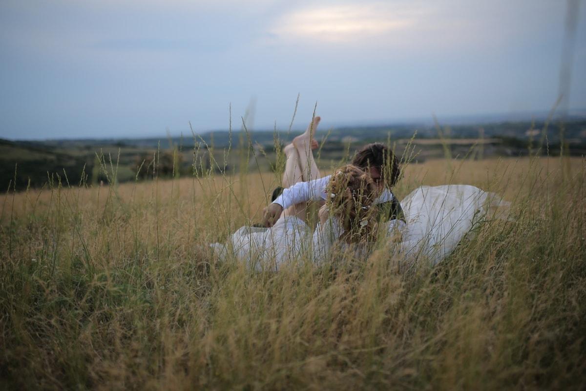 girl, kiss, grass, lover, love, romance, wading bird, white stork, field, landscape
