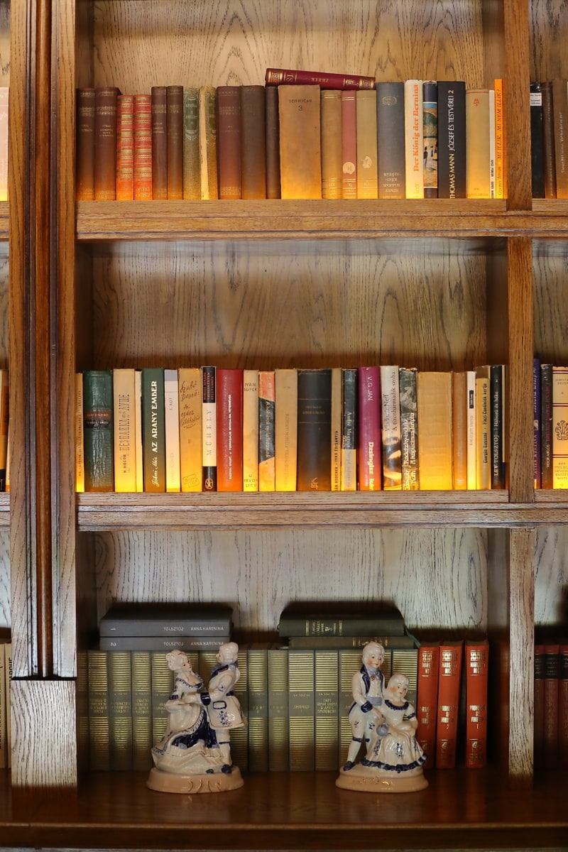 Bibliothèque, livres, bibliothèque, bibliothèque, bois, plateau, meubles, librairie, connaissances, littérature