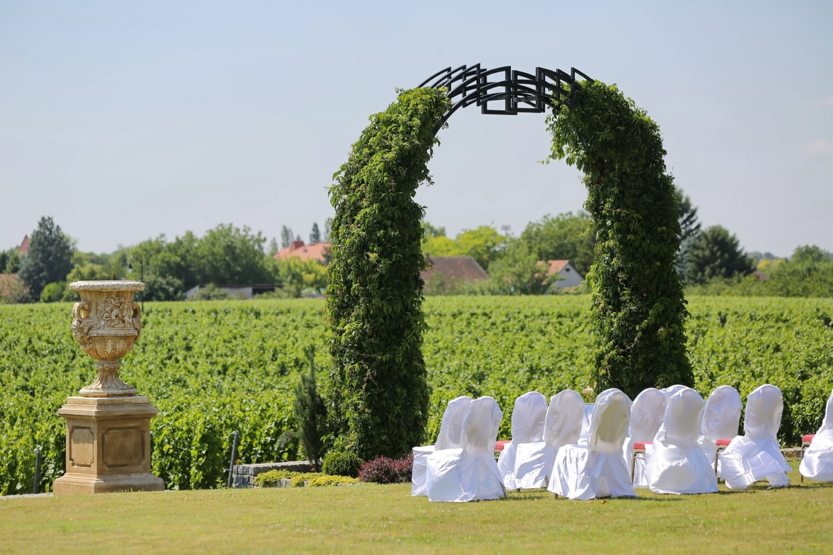 vineyard, wedding venue, outdoor, fancy, garden, grass, park, tree, architecture, landscape