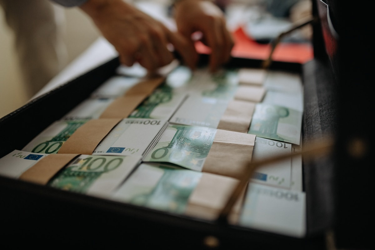 valise, billet de banque, argent, euro, trésorerie, entreprise, à l'intérieur, papier, la finance, Shopping