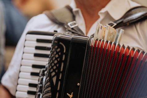 accordion, banknote, music, instrument, musician, band, retro, classic, concert, indoors