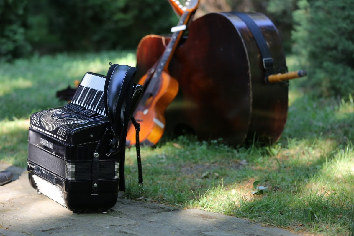 accordion, music, instrument, guitar, wood, vintage, old, outdoors, antique, classic, grass