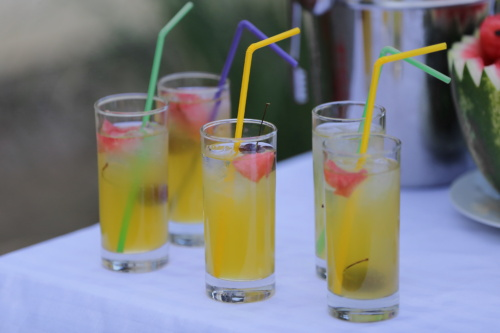 fruit juice, lemonade, fruit cocktail, drinking water, ice crystal, watermelon, ice water, drinking straw, juice, beverage