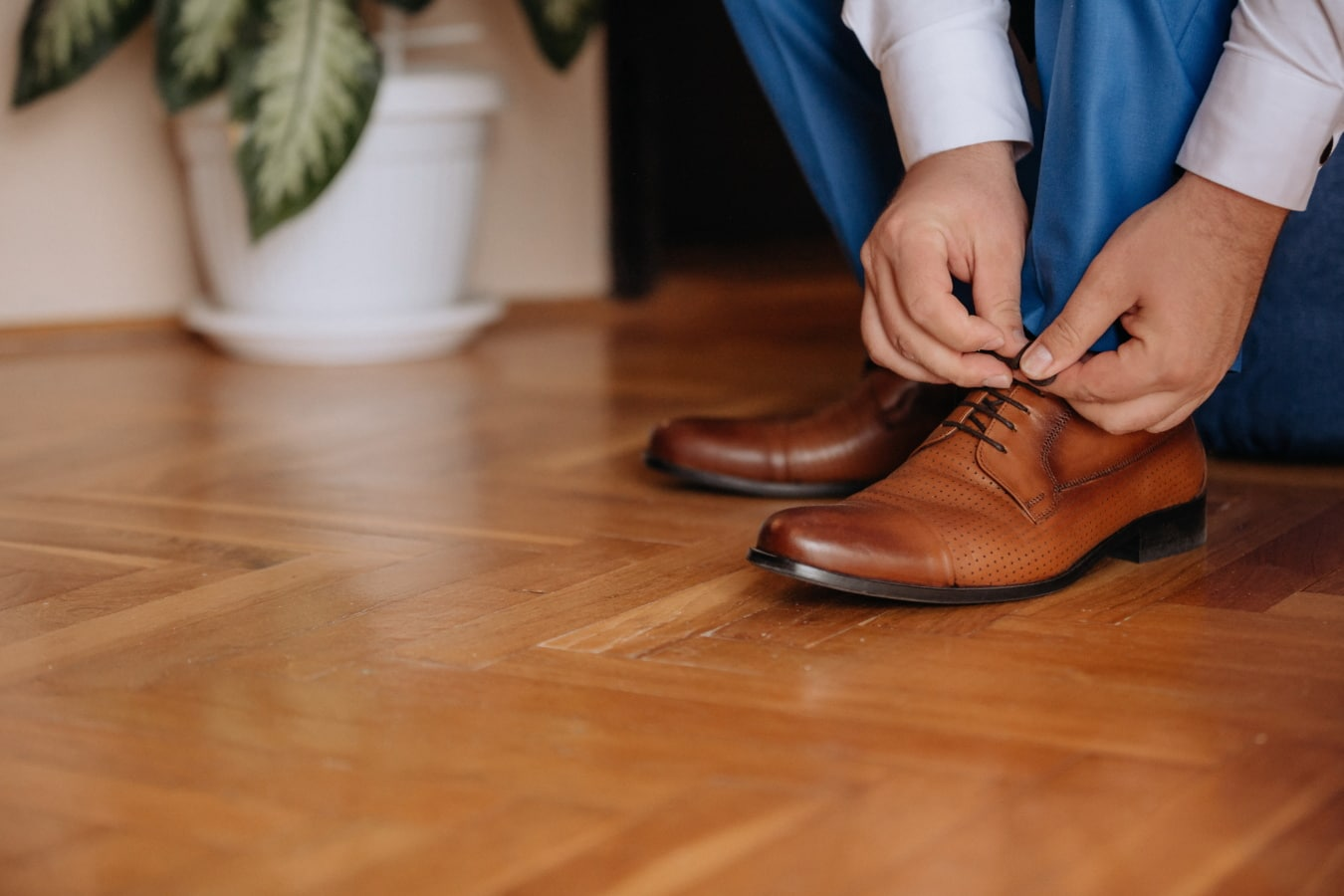 povremeni, cipele, smeđa, koža, čovjek, ruke, vezica, noge, parket, kat
