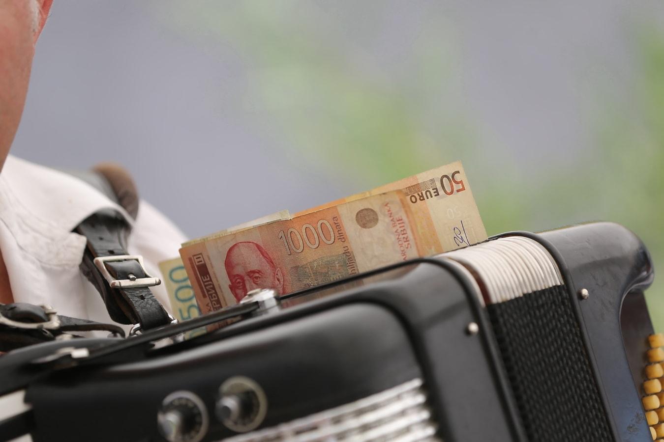 accordion, musician, music, singer, entertainment, entertainer, banknote, money, work, workman