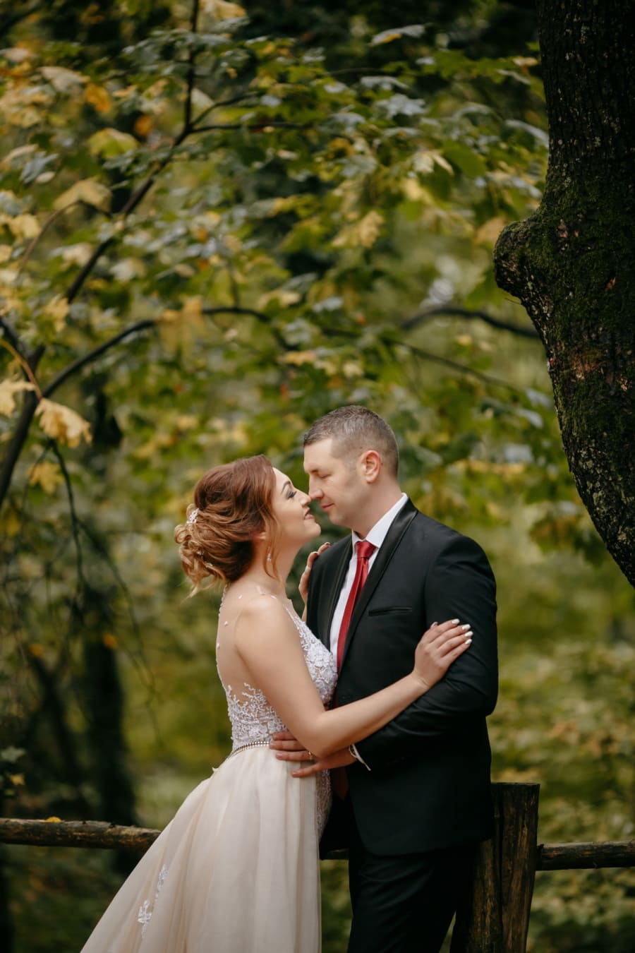paar, romantische, stehende, Kuss, Dame, Mann, Bräutigam, Liebe, Braut, Hochzeit