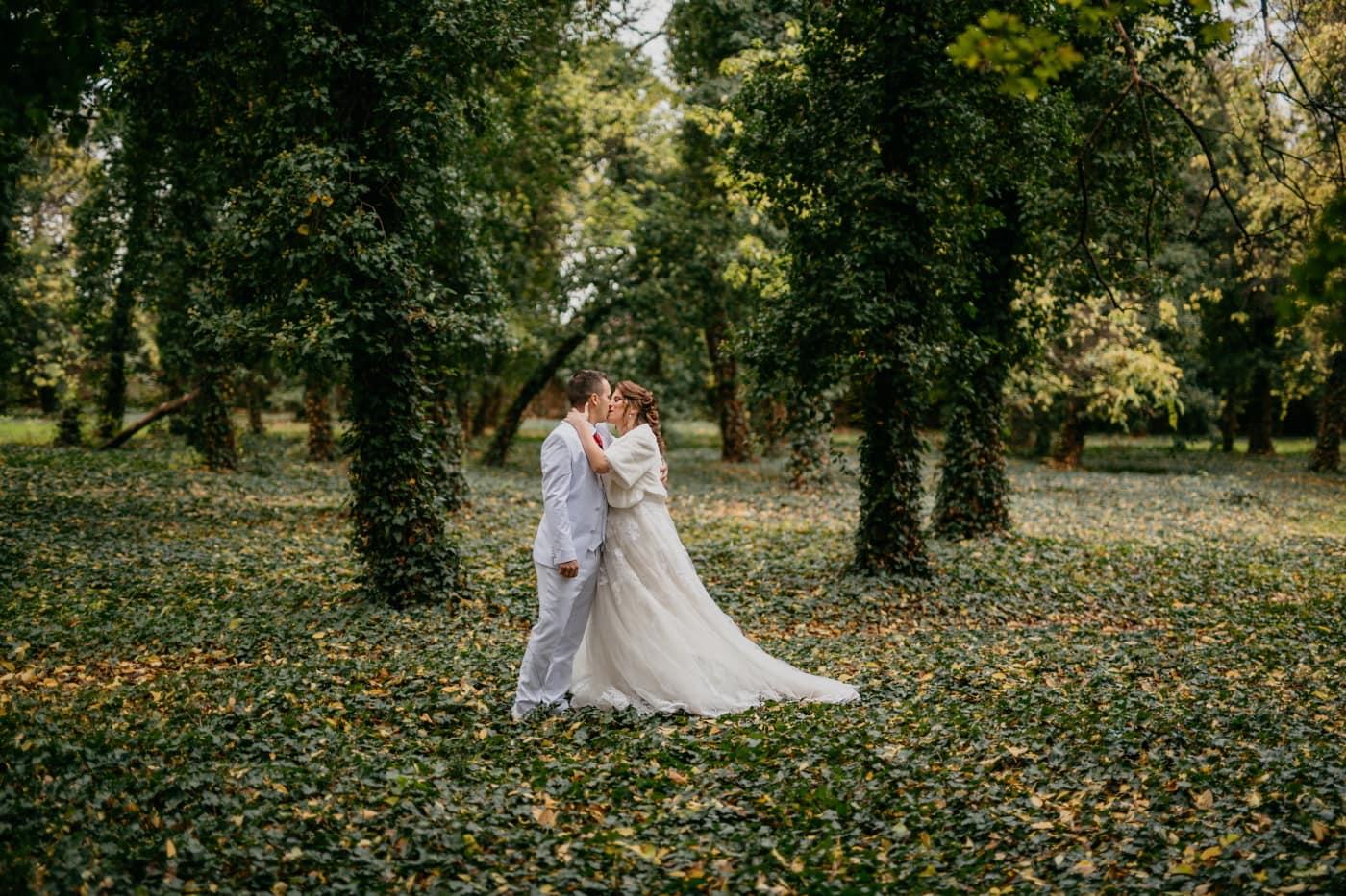 Prinzessin, Kuss, Prinz, weiß, Anzug, Hochzeitskleid, Waldweg, Braut, Hochzeit, verheiratet